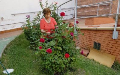 La Communauté de Villaverde (Madrid) partage avec vous