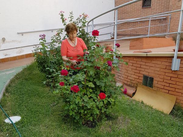 La Comunidad de Villaverde (Madrid) os comparte